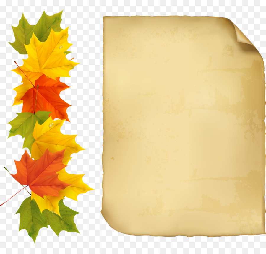Autumn Picture Frames Clip art - leaves hand-painted png download ...