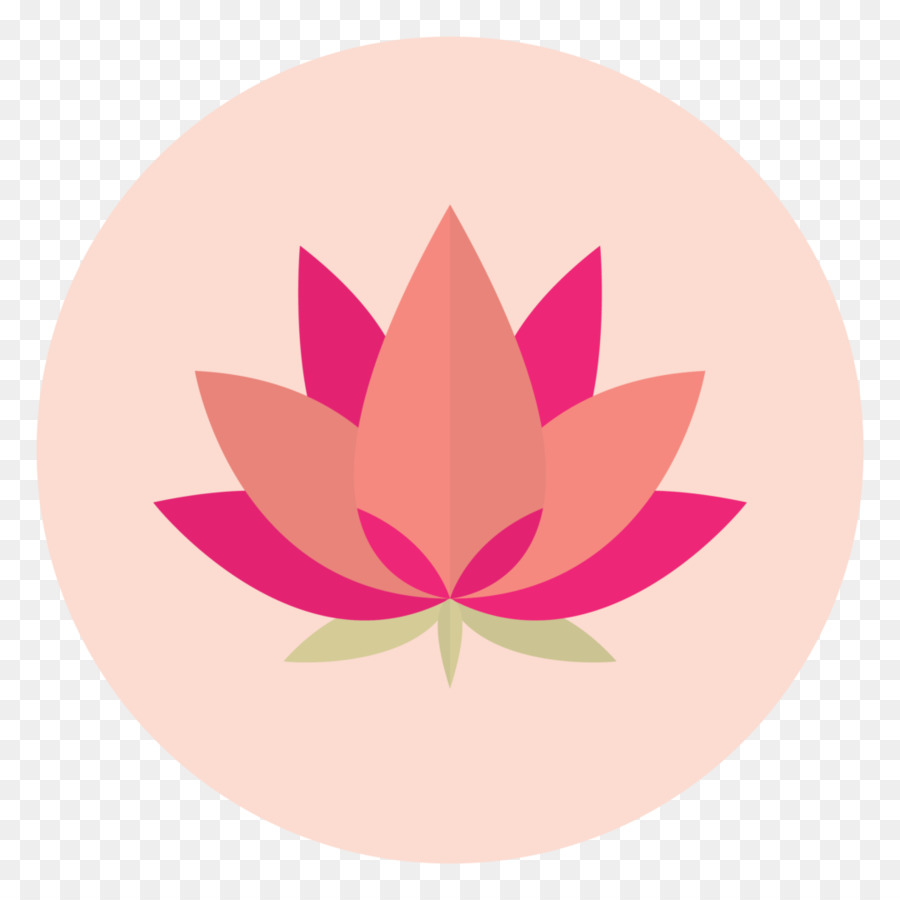 Petal Nelumbo Nucifera Flower Aquatic Plants Symbol Lotus Lotus