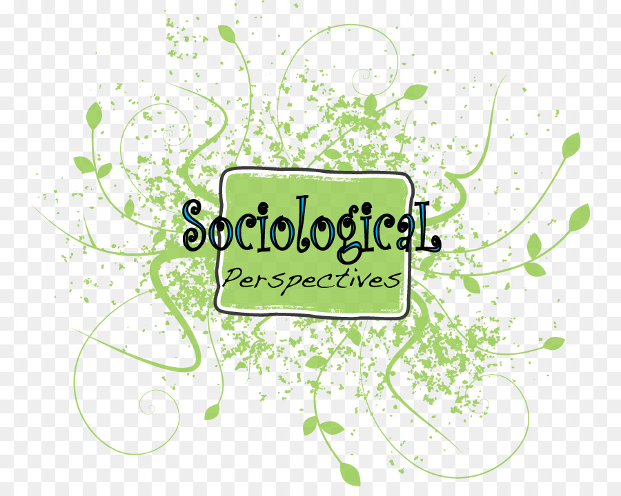 sociological imagination perspective