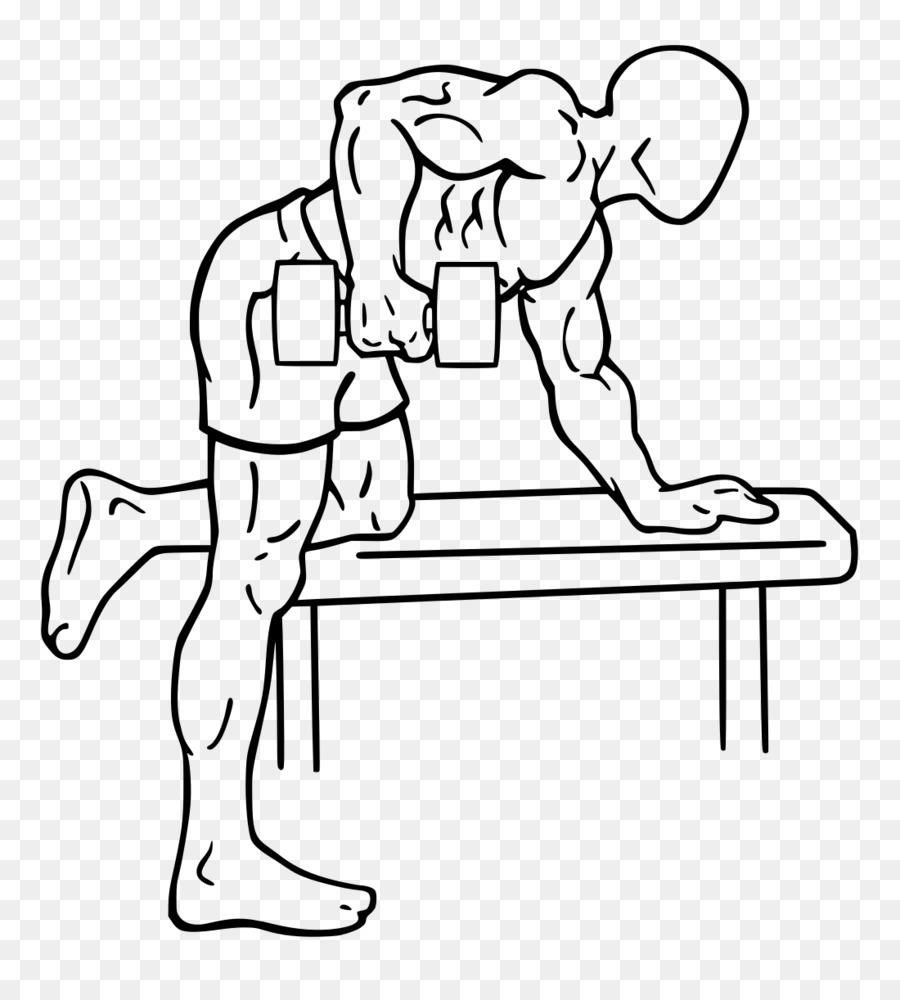 Rear delt raise Deltoid muscle Bent-over row Dumbbell - the upper ...