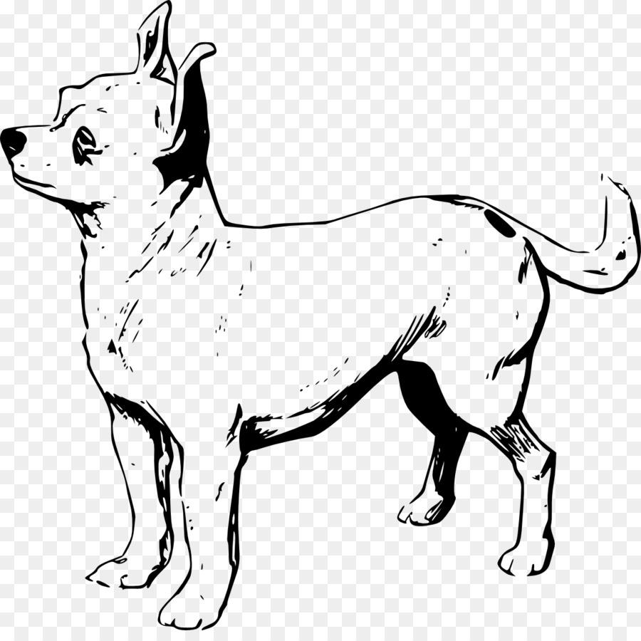 Chihuahua Cachorro libro para Colorear Pomerania Dachshund ...