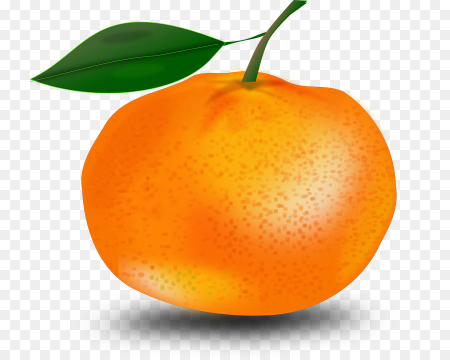 Orange Mandarin Orange png download - 780*720 - Free Transparent