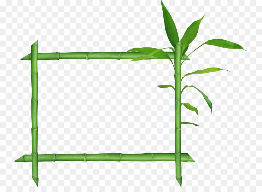 Bamboo Raster Graphics Clip Art Bamboo Frame Png Download 800