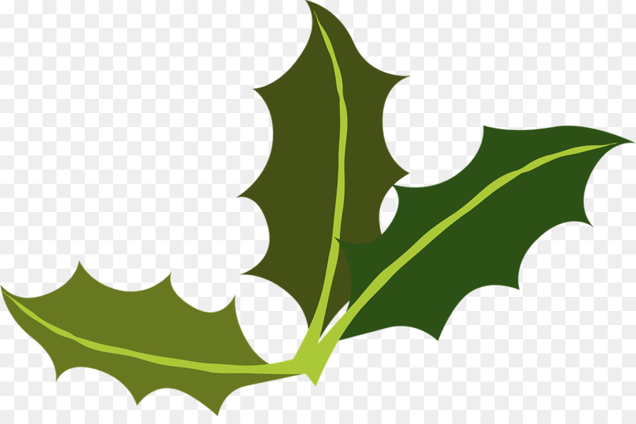 yaupon holly leaf miner common holly clip art leaf png download rh kisspng com Holly Leaf Clip Art Transparent Background Holly Leaf Border Clip Art