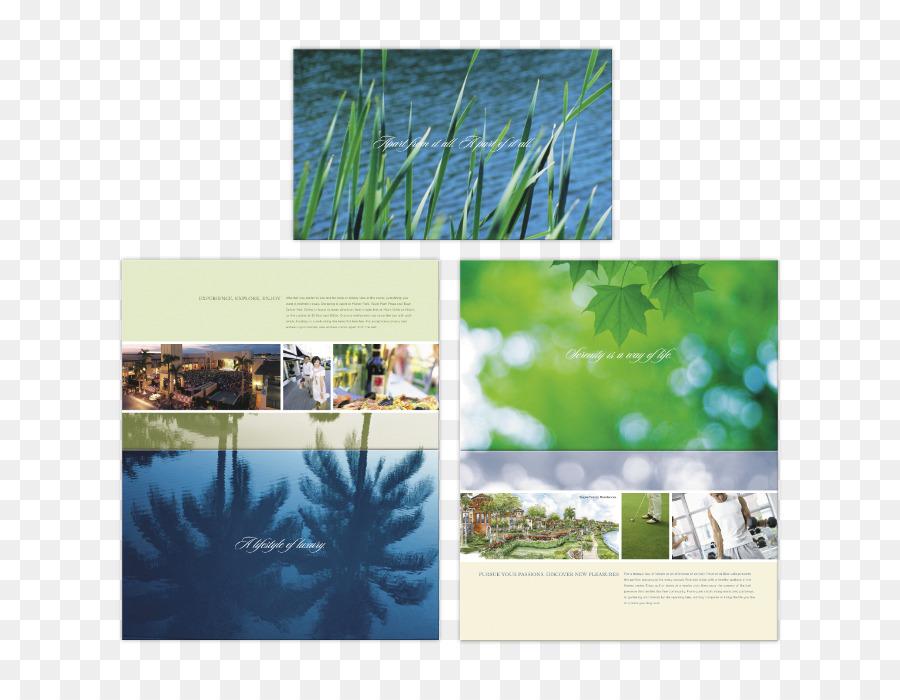 La Naturaleza Papel Tapiz De Desktop De Collage Marcos De Fotos De ...
