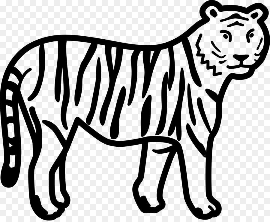 Livre De Coloriage Tigre Du Bengale Lion Le Tigre Blanc Lion