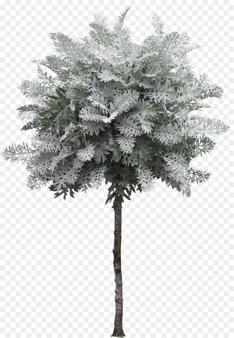 decor image free royalty tree decorative vectorstock vector