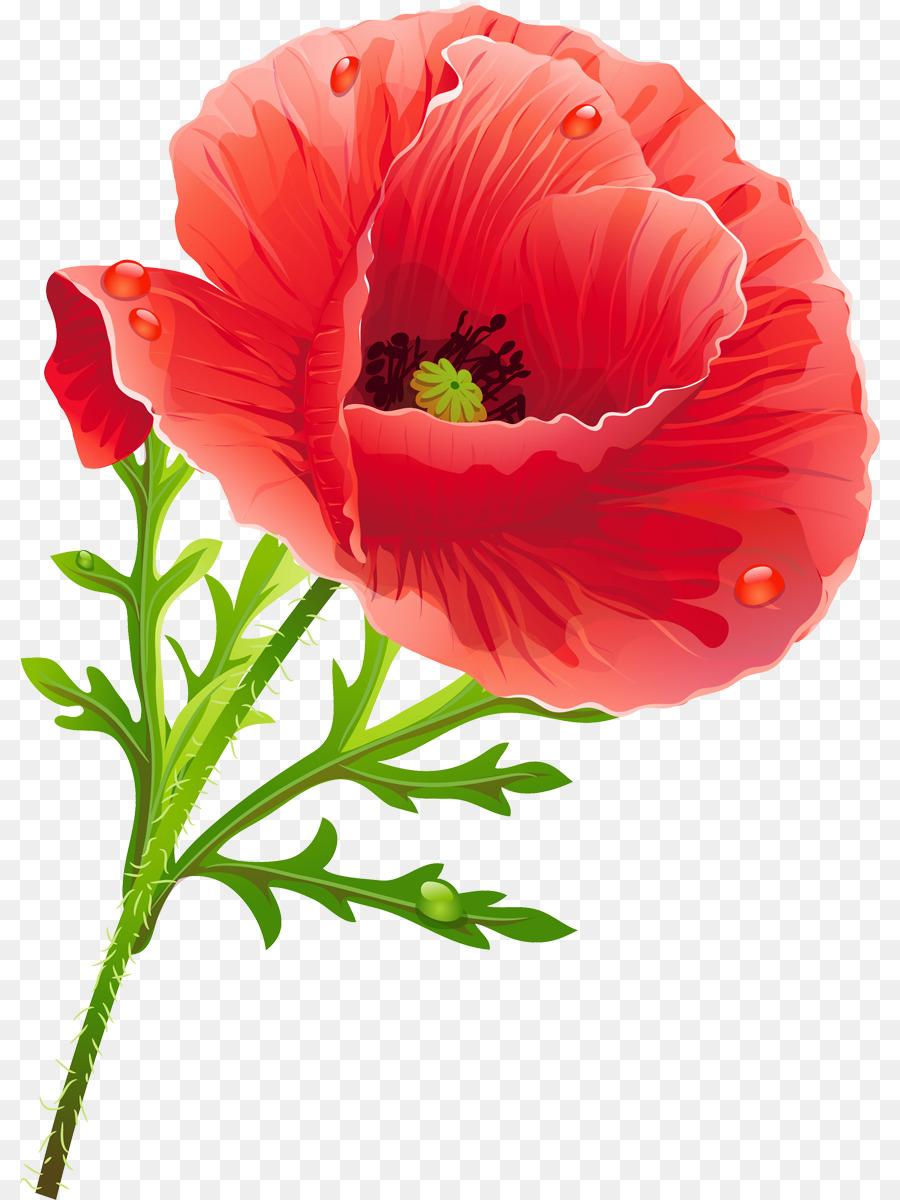 Poppy flower clip art flower png download 8601200 free poppy flower clip art flower mightylinksfo