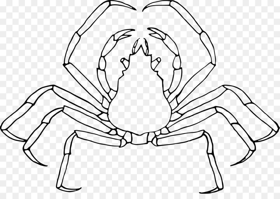 Los insectos Mosquito libro para Colorear de Niño - cangrejo de ...