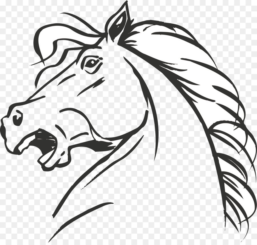 Thoroughbred Peruvian Paso Colt Foal Coloring book - horses clipart ...