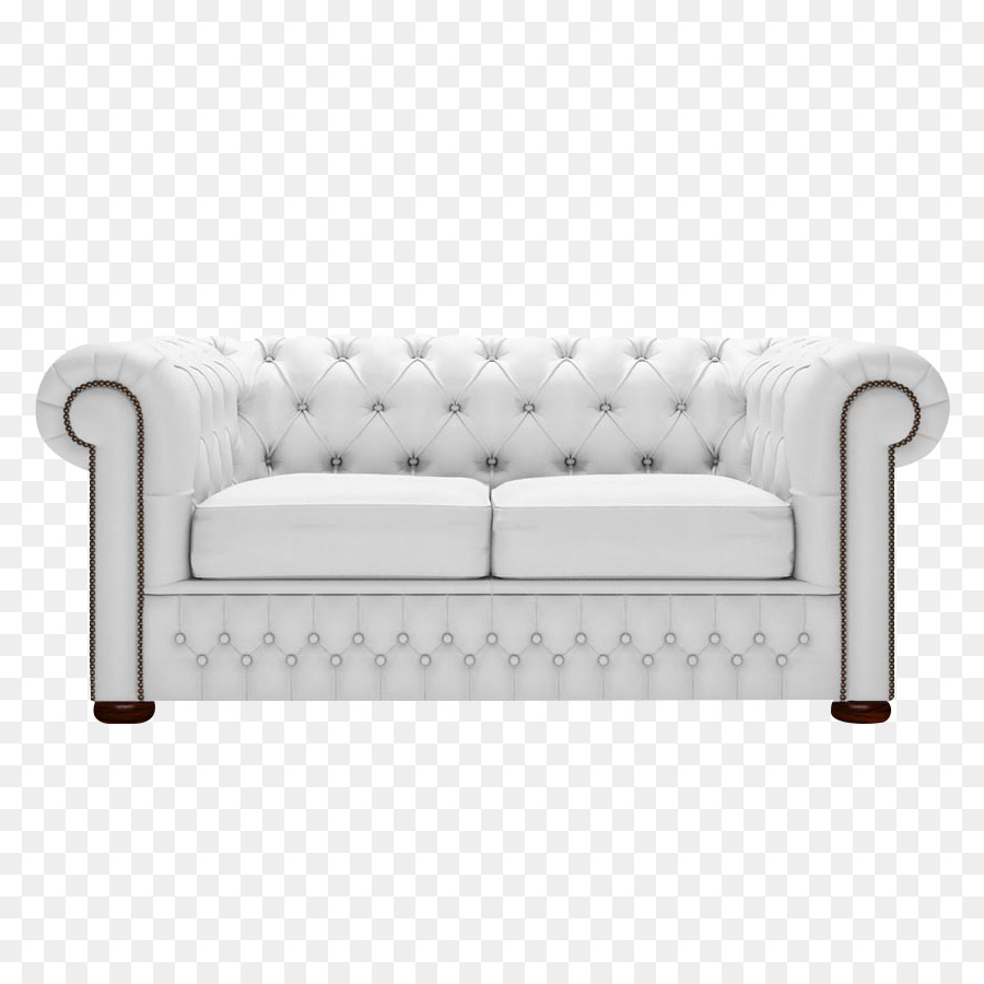 Couch Fauteuil Furniture Sofa Bed Leather   White Birch