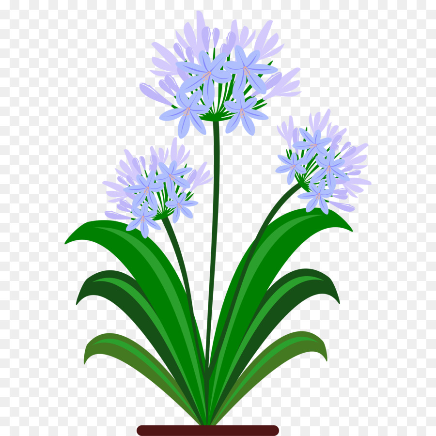 Cut flowers lily of the nile clip art flower png download 2400 cut flowers lily of the nile clip art flower izmirmasajfo