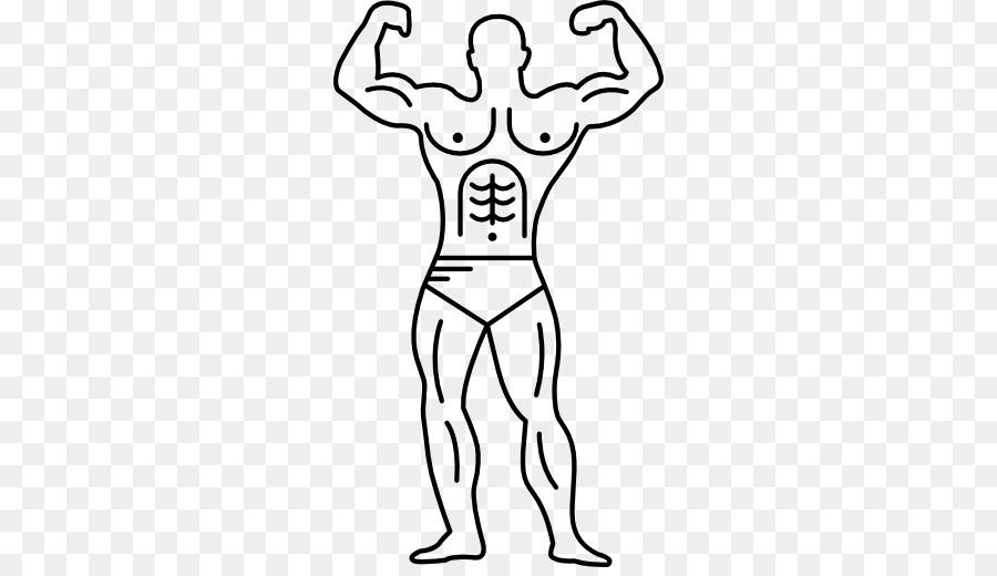 Músculo del cuerpo Humano sistema Muscular del Brazo - los ...