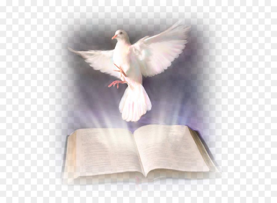 Alkitab Roh Kudus Dalam Kekristenan Baptisan Dengan Roh