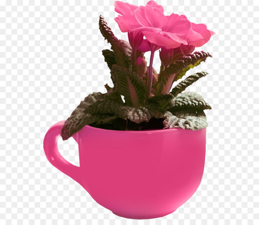 Geburtstag Geschenk Blumen Garten Rosen Urlaub Geburtstag Png