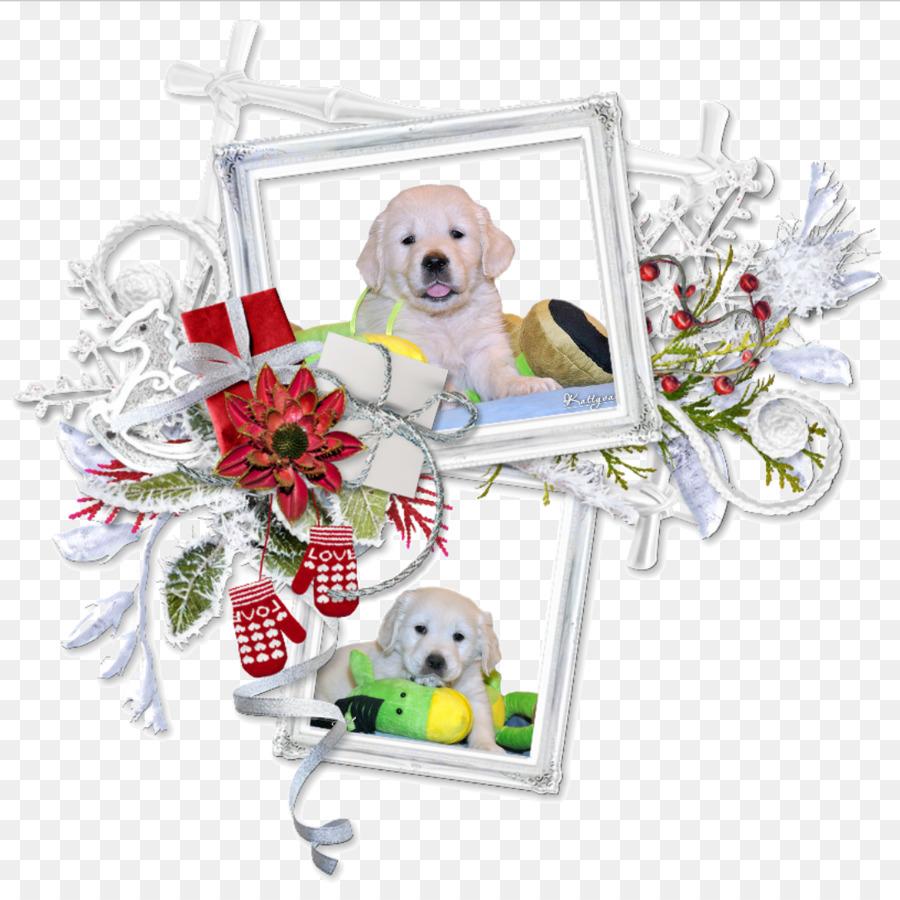 Welpen Centerblog Christmas Nachricht - Welpen png herunterladen ...