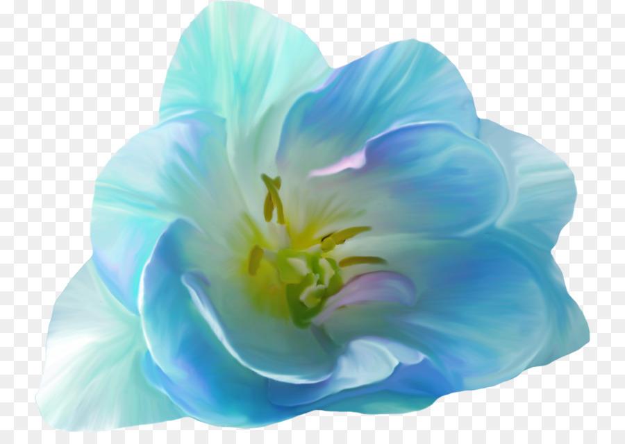 Pink flowers blue clip art flower png download 800623 free pink flowers blue clip art flower mightylinksfo