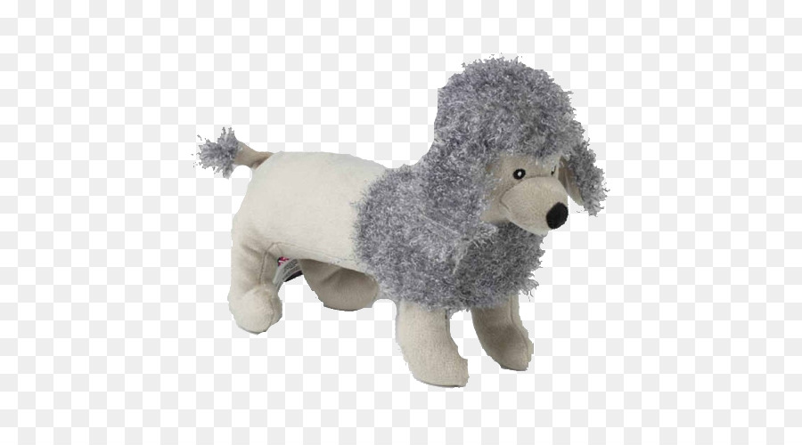 Standard Poodle Miniature Poodle Puppy Canis Panther Puppy Png