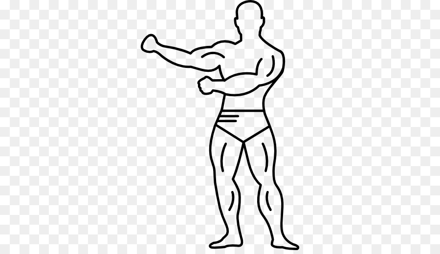 Human body Muscle Drawing Muscular system - milk strong muscles ...