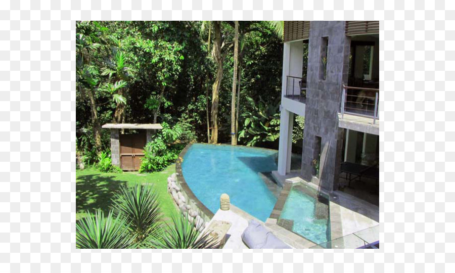 Backyard Majorelle Blue Majorelle Garden Swimming Pool   Luxurious And  Gorgeous