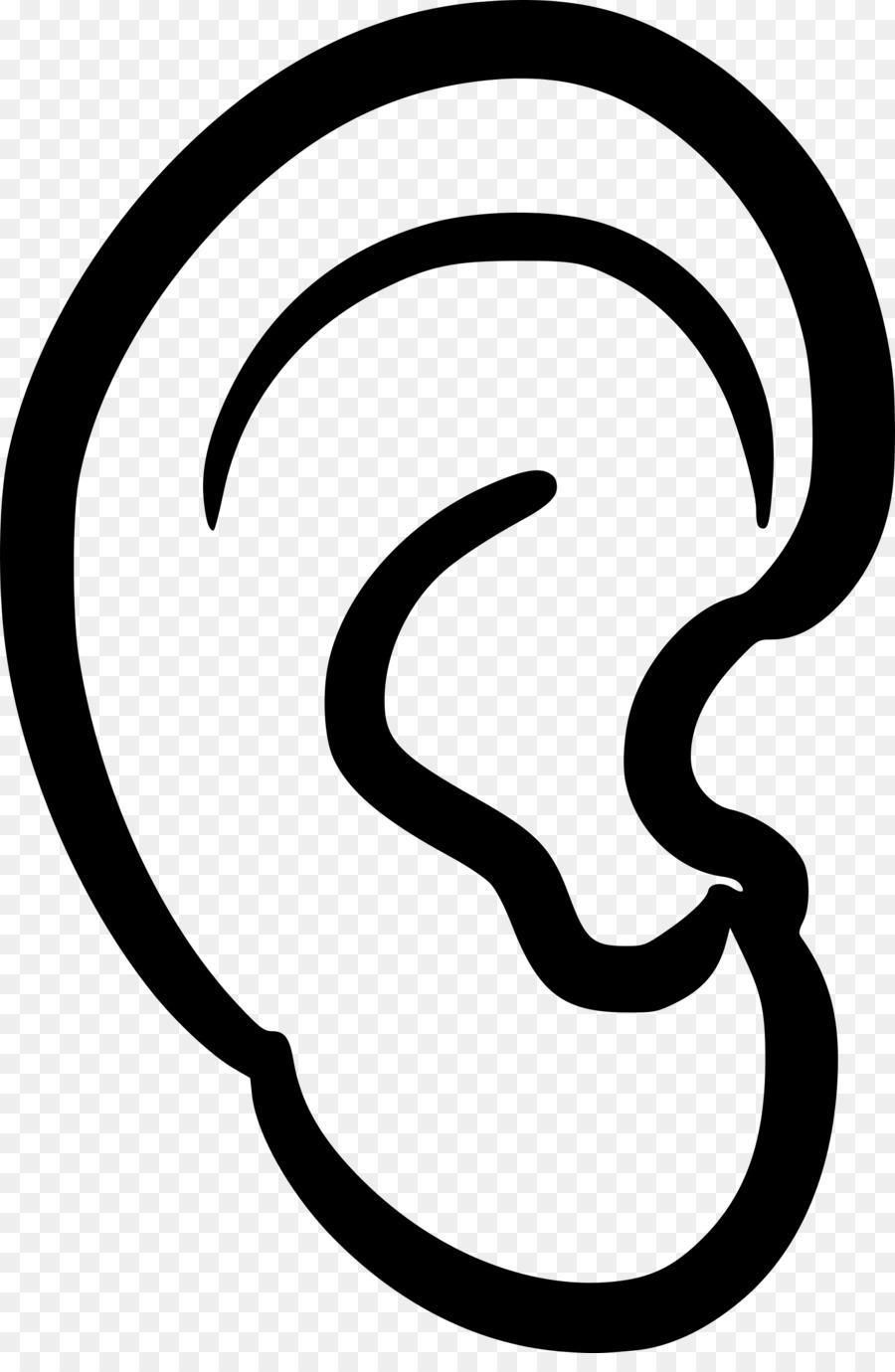 Anatomía del oído Clip art - oreja de oro png dibujo - Transparente ...