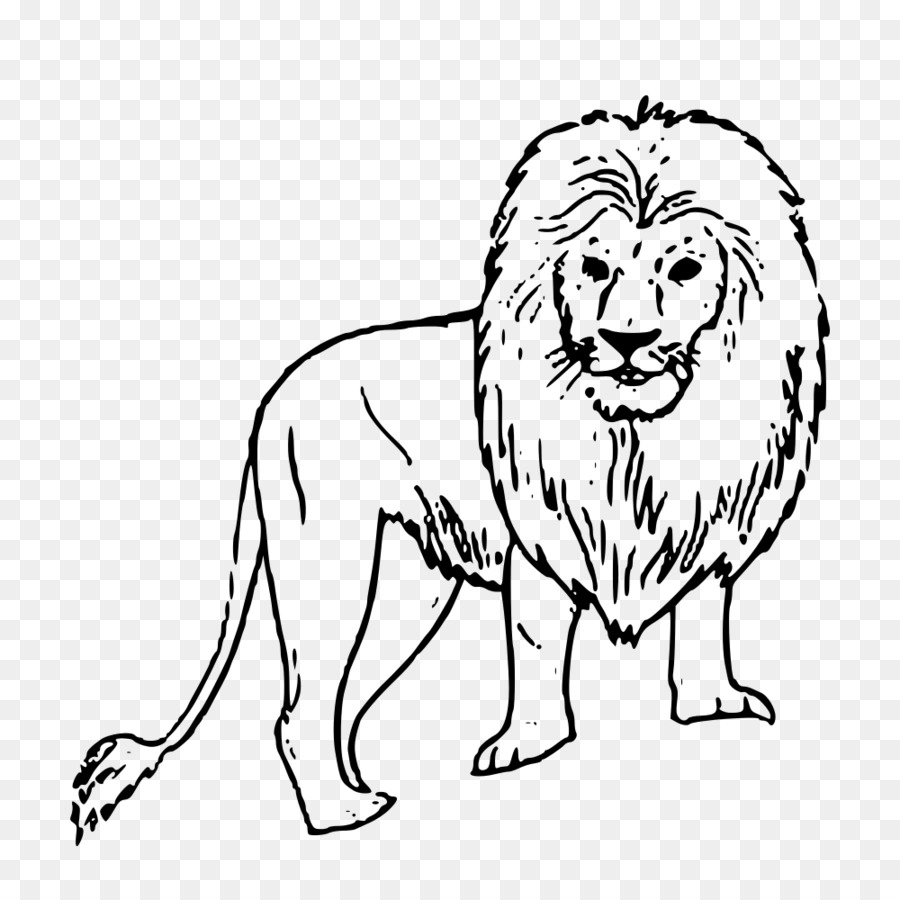 Lion Coloring book Nala Simba Drawing - lion png download - 1000 ...