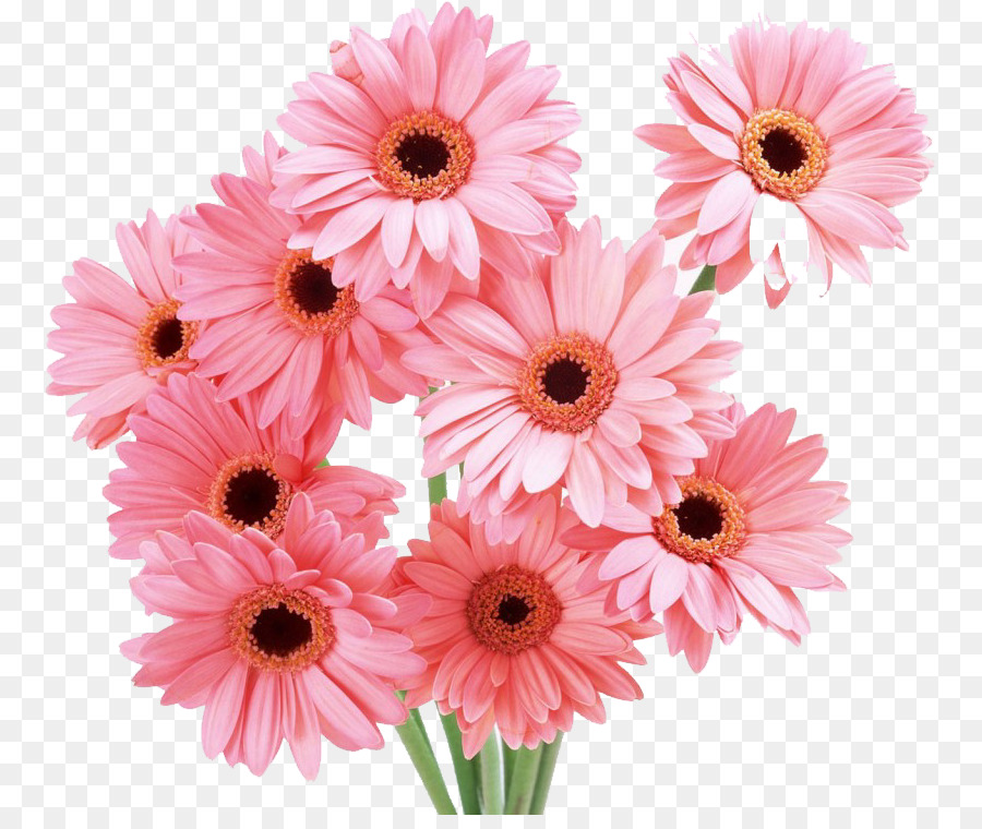 Flower bouquet Rose Cut flowers Transvaal daisy - flower png ...