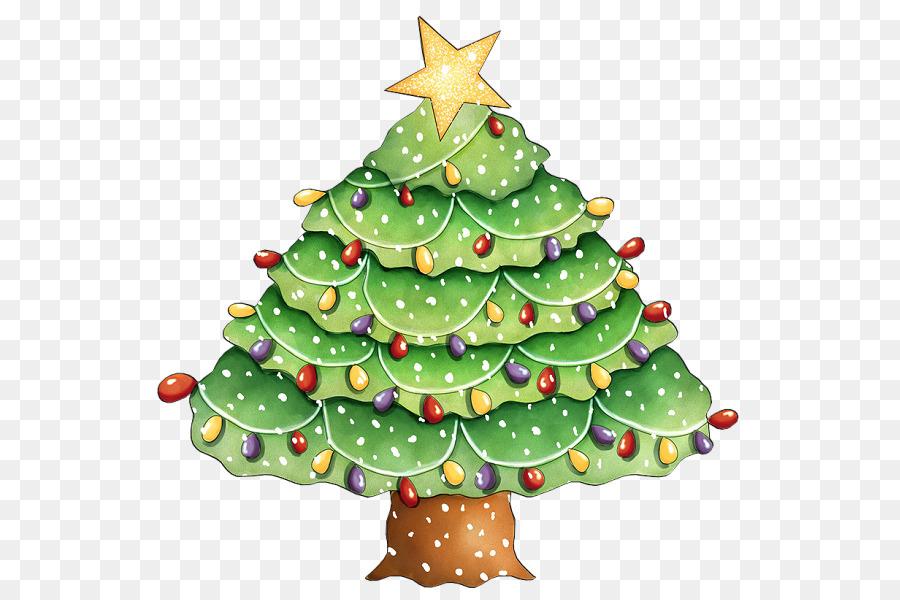 árbol De Navidad Abeto Picea Pino árbol De Navidad Png Dibujo