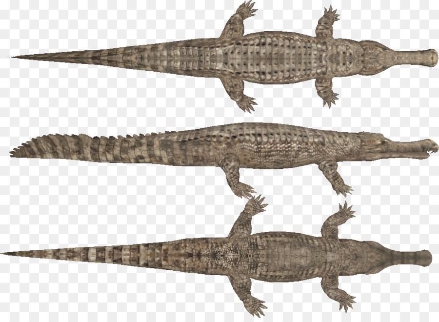 Cocodrilo del nilo Sarcosuchus Ornithocheirus Pteranodon - cocodrilo ...