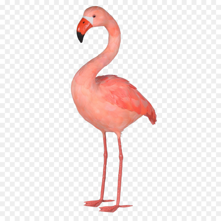 plastic pink flamingo Shop for plastic lawn flamingos online at target free shipping on purchases over $35 and save 5% every day with your target redcard.