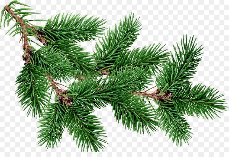 fir pine tree clip art free christmas tree branches buckle material - Christmas Tree Branches