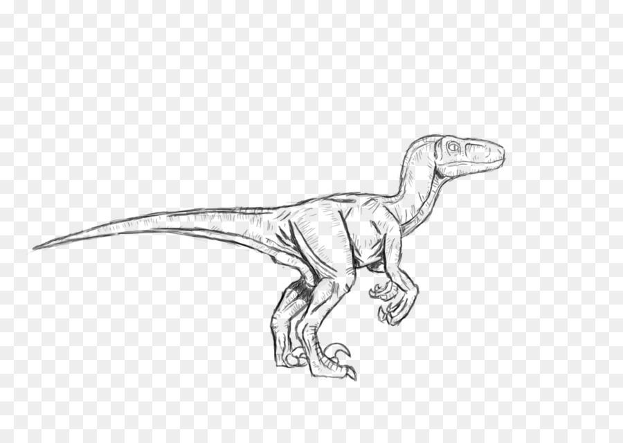 Velociraptor Troodon Tyrannosaurus Dilophosaurus Dinosaurio ...