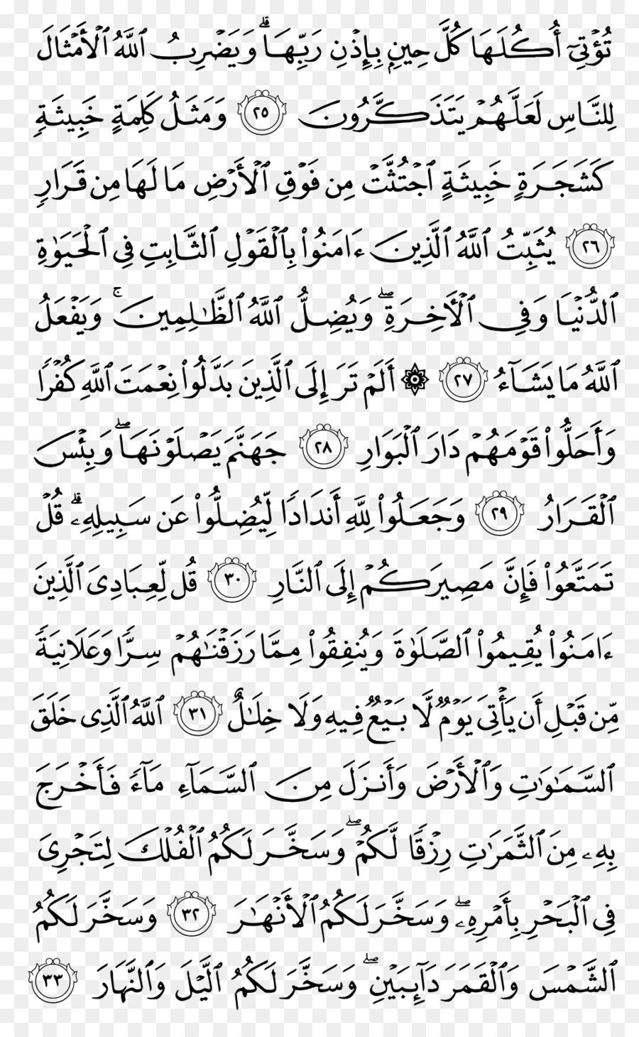 Quran Background png download - 1024*1656 - Free Transparent