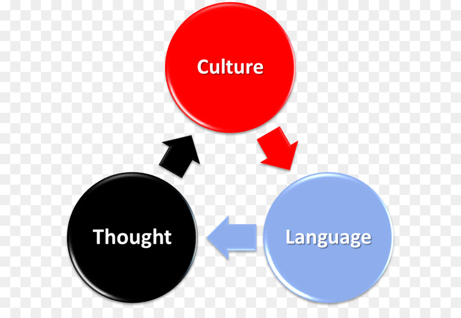 Sociocultural perspective piagets theory of cognitive development sociocultural perspective piagets theory of cognitive development psychology zone of proximal development others ccuart Image collections