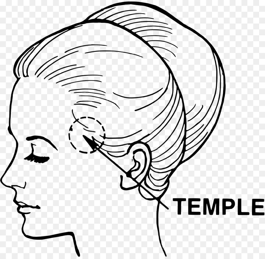 Temple Head And Neck Anatomy Temporal Bone Temporal Lobe Temple