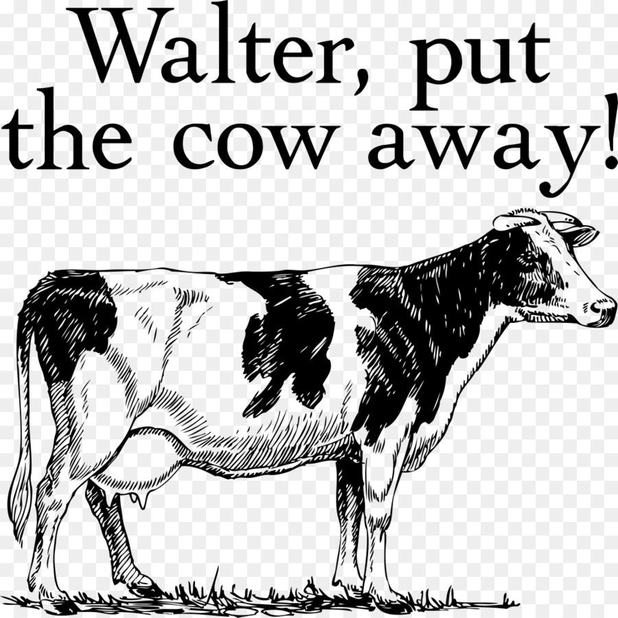 Holstein Friesian Cattle Ayrshire Beef Dairy