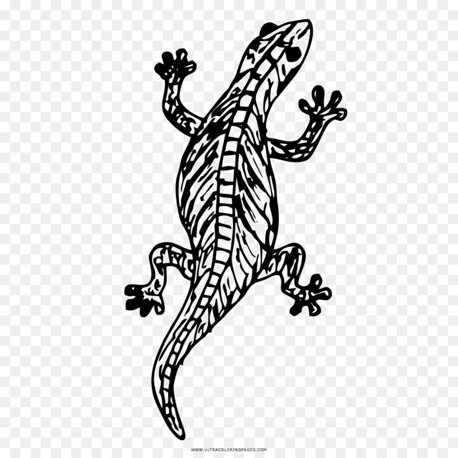Lagarto Dibujo para Colorear libro de Reptiles - lagarto Formatos De ...