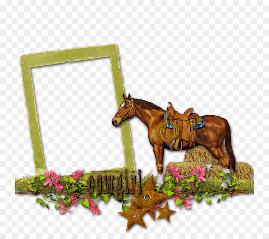 Picture Frames Horse Clip art - horse png download - 800*800 - Free ...