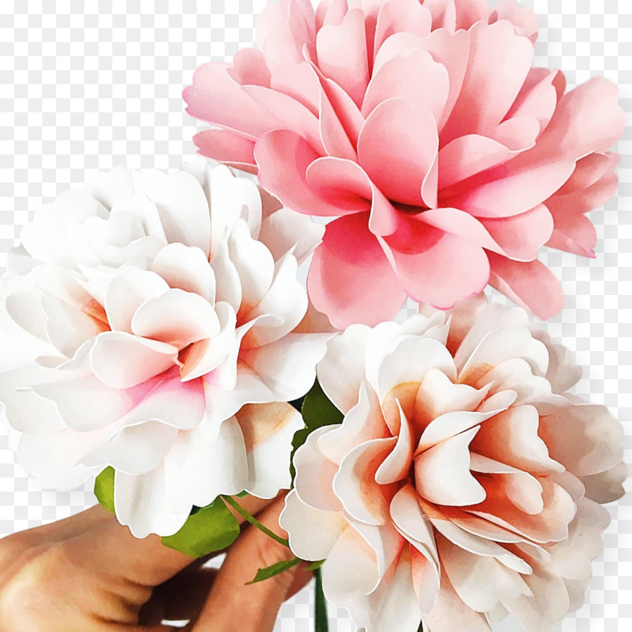 Paper Carnation Flower How To Pattern Hand Painted Carnations Png