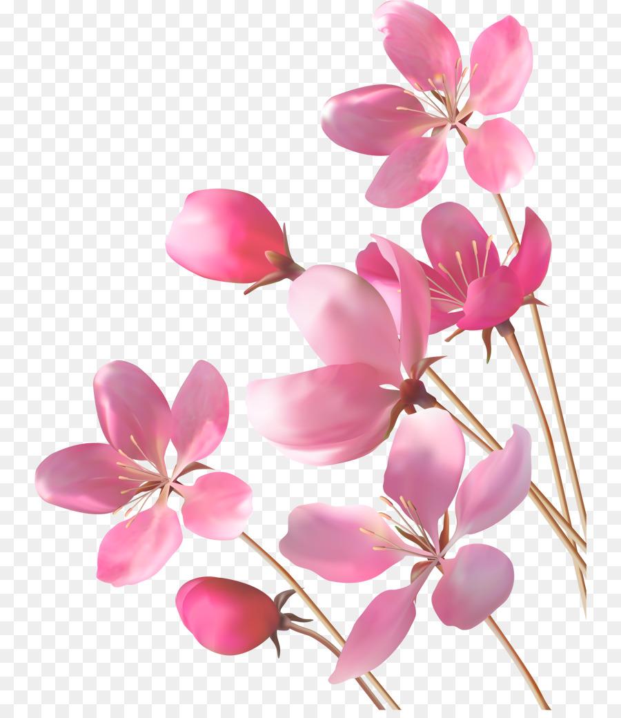 Desktop Wallpaper Pink Flowers A Beautiful Roommate Who Receives