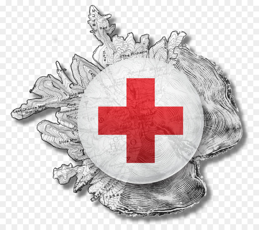 """indian red cross Indian red cross society was constituted under the act of parliament known as """"indian red cross society"""" act xv of 1920 his excellency the governor of andhra pradesh is the president and the honorable chief minister is the vice-president of indian red cross society a p state branch."""