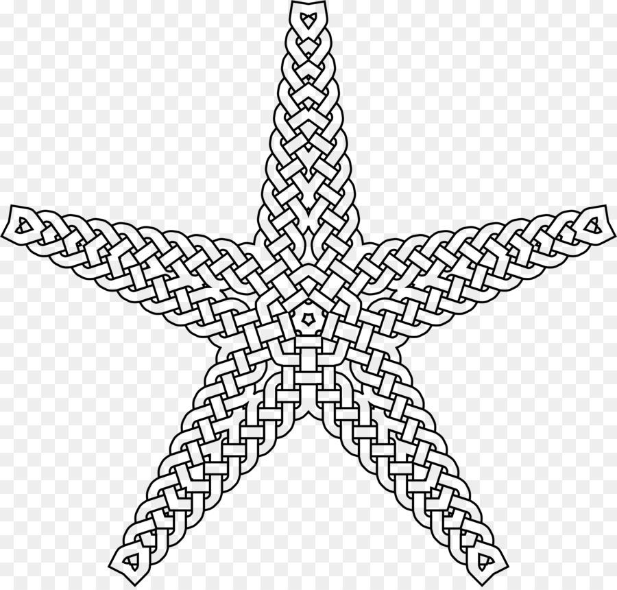 Estrella de mar Perdido Océano, una Tinta de Aventura y Libro para ...