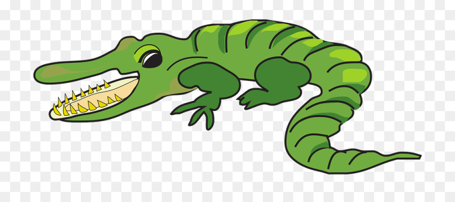 alligator cartoon drawing clip art alligator png download 768