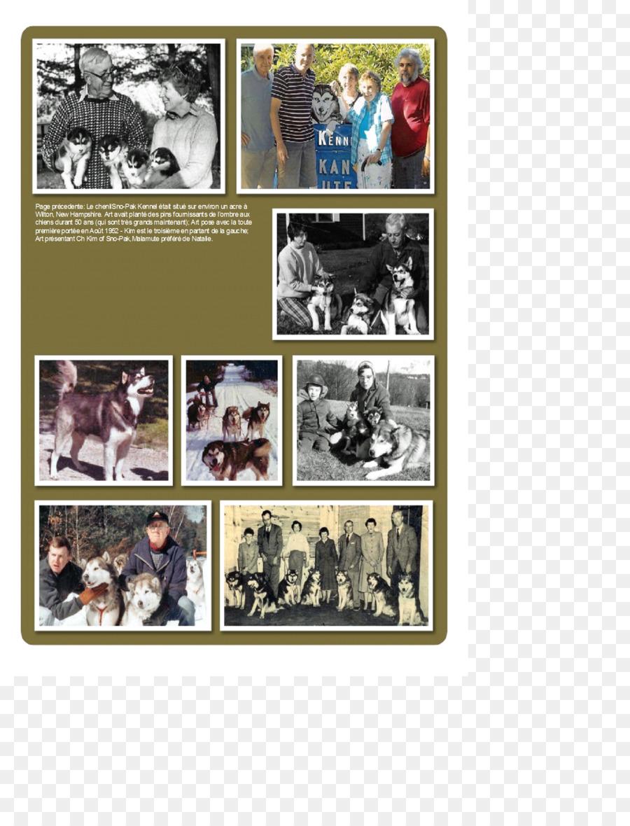 Collage De Marcos De Fotos De La Afición - collage Formatos De ...