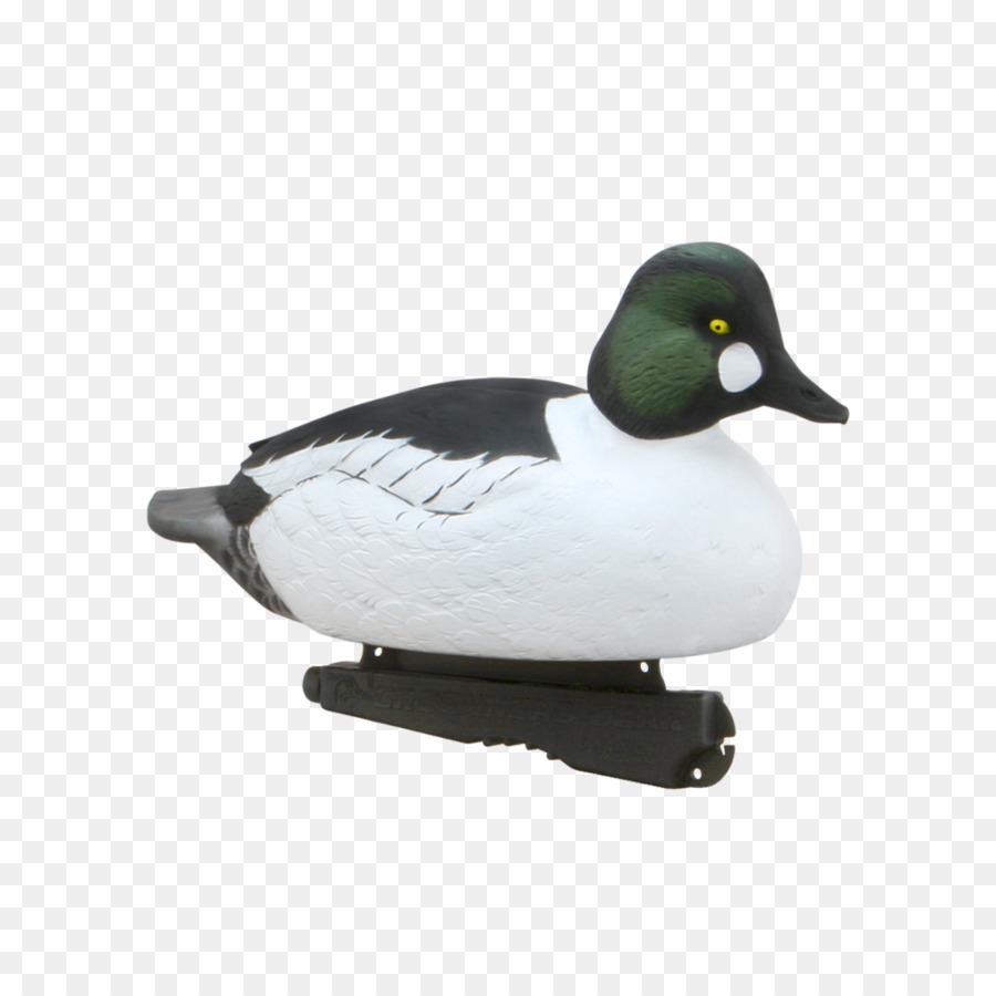 Mallard Duck Hunt de caza de aves Acuáticas - pato Formatos De ...
