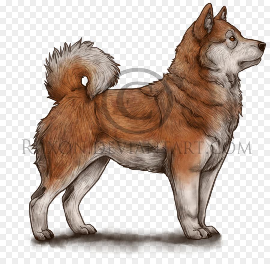 условия содержания собаки породы канадская эскимосская собака