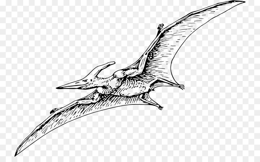 Pterodactyls Pteranodon Pterosaurs Carnivores: Dinosaur Hunter ...