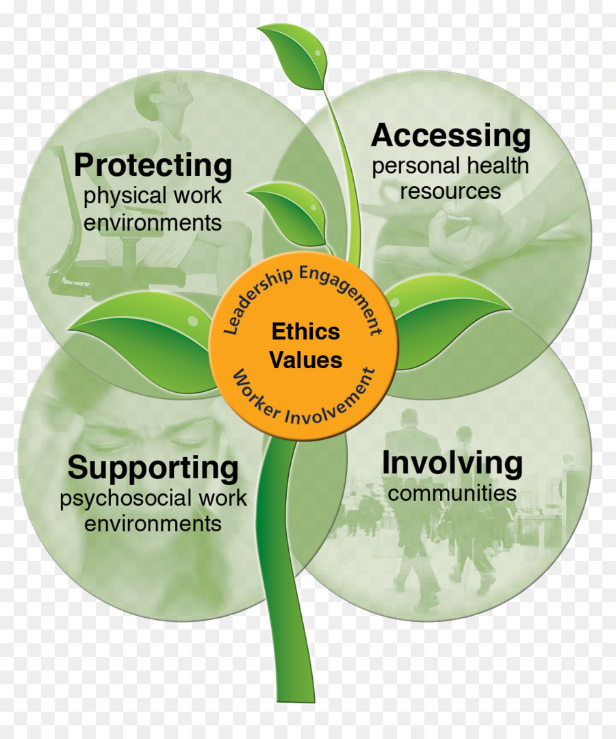 promoting a healthy and safety environment in Environmental health is the branch of public health that focuses on the interrelationships between people and their environment, promotes human health and well-being, and fosters healthy and safe communities.