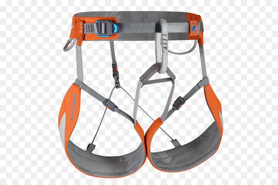 Mammut Klettergurt : Klettergurt mammut sports group rock climbing equipment skifahren