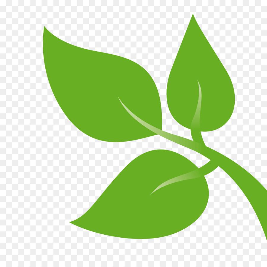 Foglia Clip Art Giallo E Verde Foglia Sfondo Verde Foglia